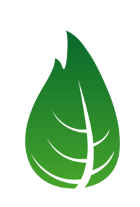 Green leaf logo connoting renewable energy